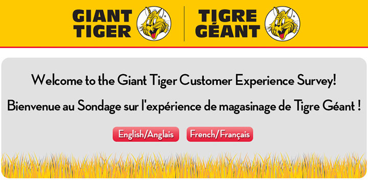 Giant Tiger Survey At www.GiantTiger.com/Survey