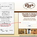 www.Raysfeedback.com - Take Ray's Constant Survey